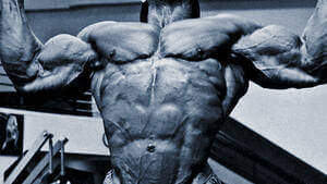 Human Growth Hormone (HGH) Cycle